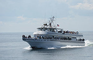 Provincetown Fast Ferry