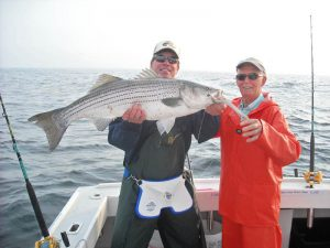 boston striper fishing