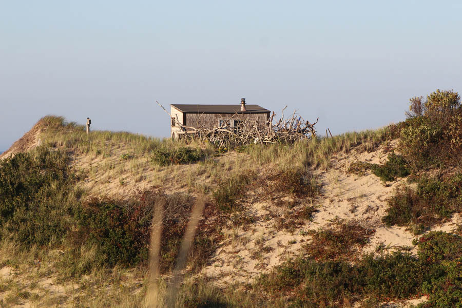 Provincetown Dune Shack with Tree Fence