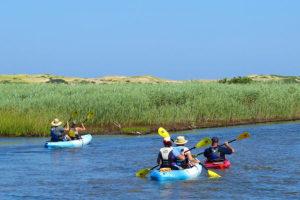 Art's Dune and Kayaking Adventure Tour