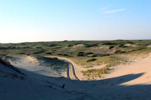 Dune Hill Road - Provincetown Dunes
