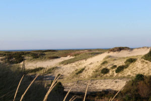 Provincetown Dunes - Atlantic Ocean in Distance