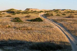 Uphill to Pilgrim Lake Provincetown Dunes